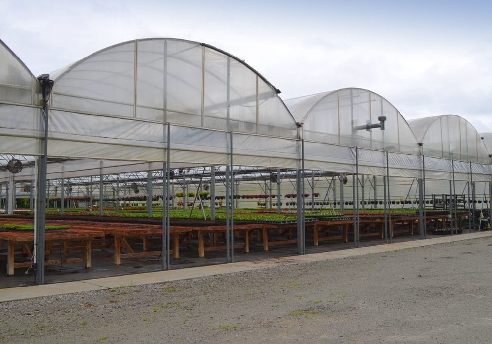 Gutter Connect Greenhouse By The Greenhouse Company