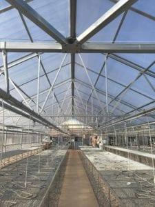 Interior Appalachian Greenhouse by Jaderloon