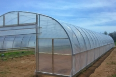 crop-tunnel-HT1