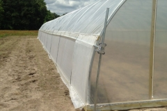 crop-tunnel-may-06-011