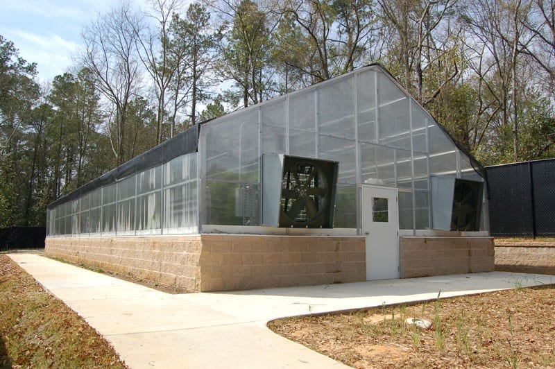 Instructor Greenhouse