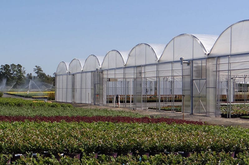 Classic Gutter connect greenhouse