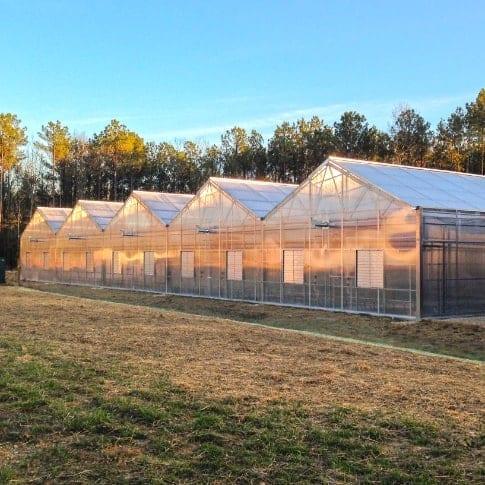 Appalachian Greenhouse